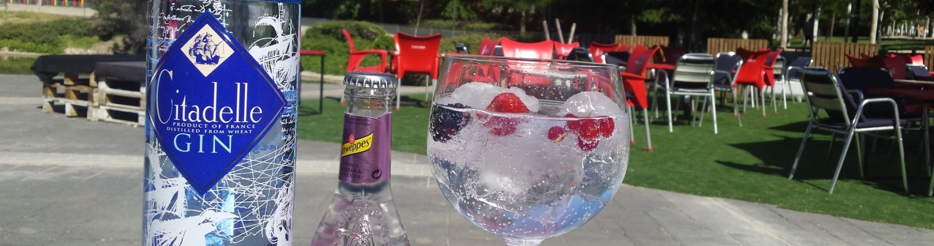 Mojitos El Lago Lounge Las Rozas